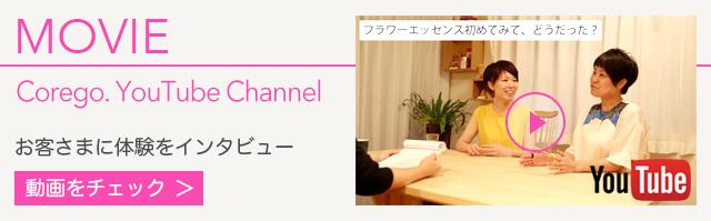 動画 お客様に体験をインタビュー